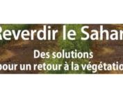 Fondation Reverdir le Sahara